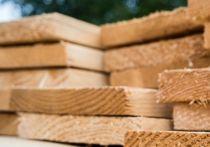 Holz-Diele 30 x 240 mm - sägerau (LG: NW)