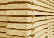 Holzbretter 24 x 160 mm - sägerau - 4,0 m lang