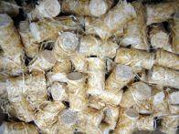 Trendy Feueranzünder 100 % Kiefern-Holzwolle - 100 Stück